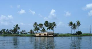 Kumarakom Bird Sanctuary,Vembanad Lake And Pathiramanal Island