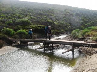 Ravine Des Casoars