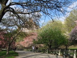 Image of Riverside Park