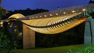 Image of Henderson Waves