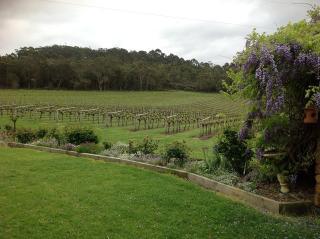 duckett's mill winery