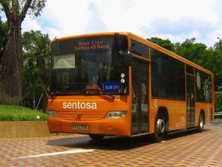 The Sentosa Bus