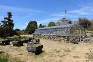 Ubc Botanical Garden And Centre For Plant Research