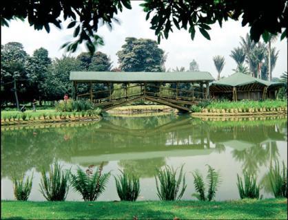 Jardin botanico caracas ticket price timings for Hotel jardin botanico