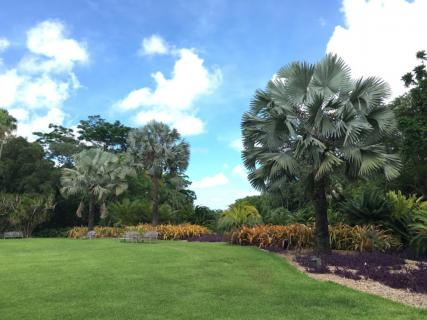 Fairchild tropical botanic garden miami ticket price - Fairchild tropical botanic garden hours ...
