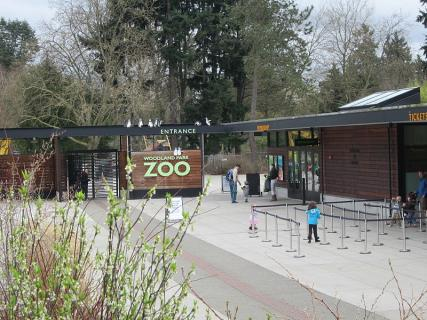 Woodland Park Zoo Seeking Input On What Re Opening Will Look Like