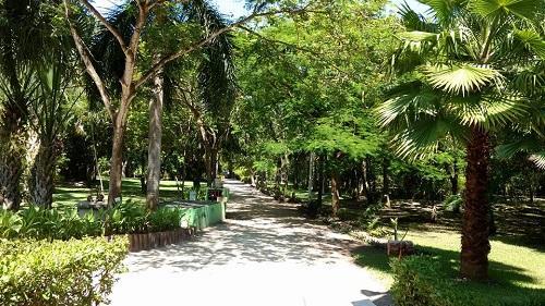 Jardin botanico unacar ciudad del carmen reviews for Hotel jardin botanico