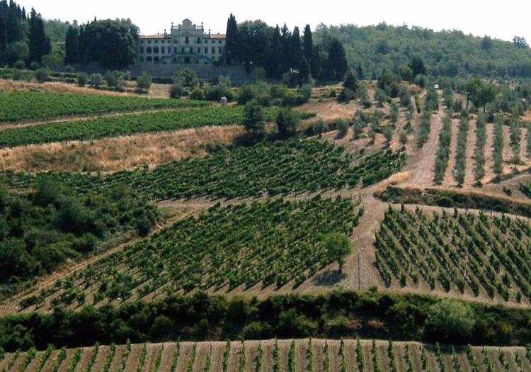 San Gimignano, Siena And Chianti Tour - Pisa