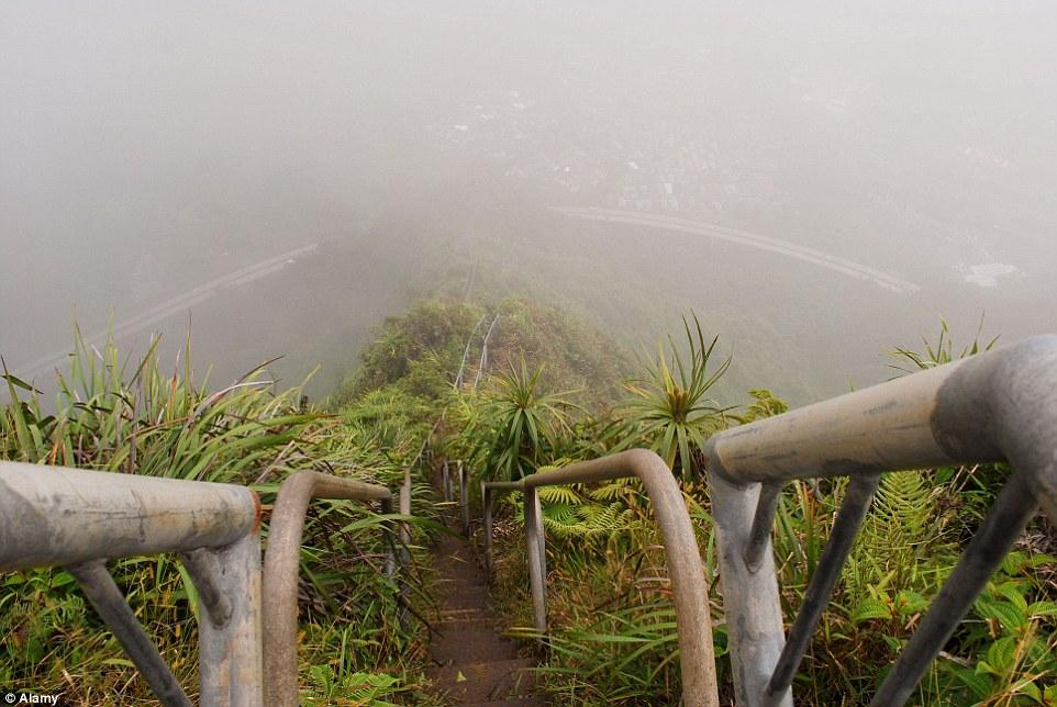 media_gallery-2015-07-17-15-The_Haiku_Stairs_in_Oahu__Hawaii_d0c209760d4c422226d7135a8a76dfcf.jpg