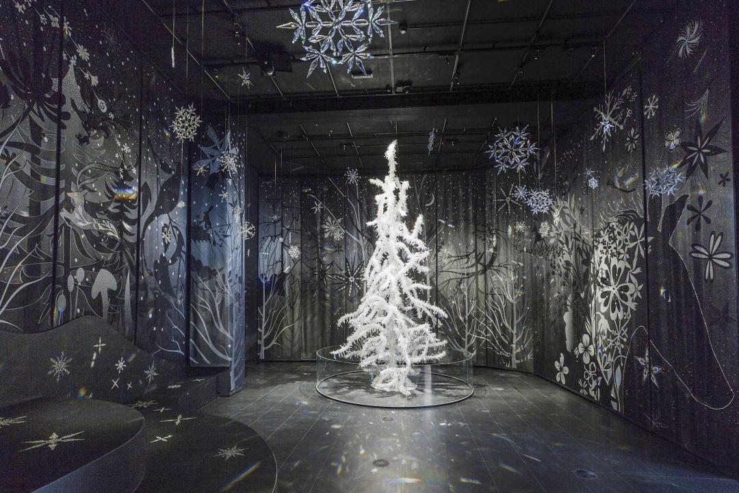 media_gallery-2015-07-21-4-crystal_Tree_fc9e257feba1183e617dc6036669a955.jpg