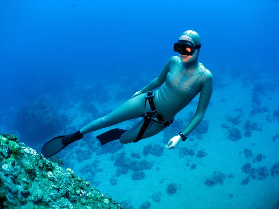 Best Free Diving Locations Across The World TripHobo - The 10 best scuba diving locations in the world