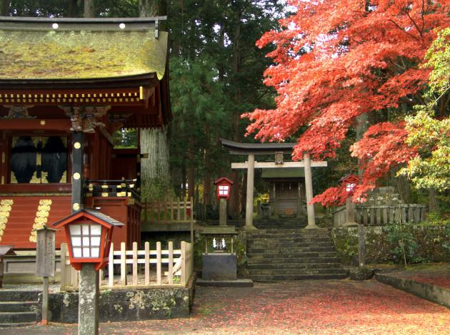 respect the tradition of Shrines