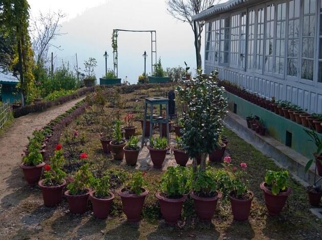 Darjeeling - some of the best honeymoon resorts in India