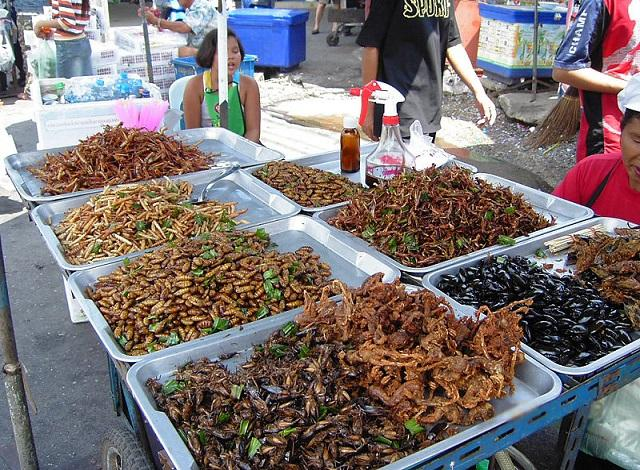 eat some fried insects on the streets of Thailand