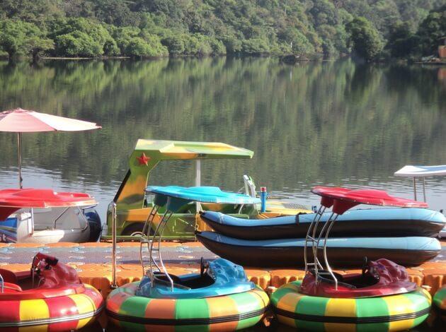 unususal activities to do in Goa