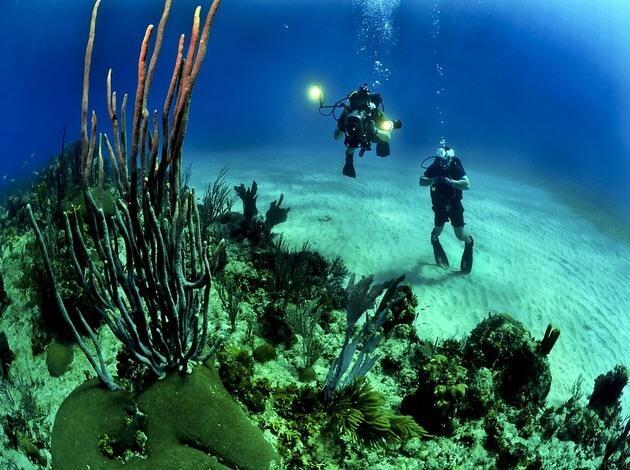 things to do in Bora Bora honeymoon