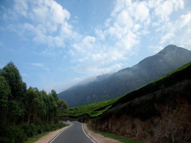 Bangalore to Munnar road trip