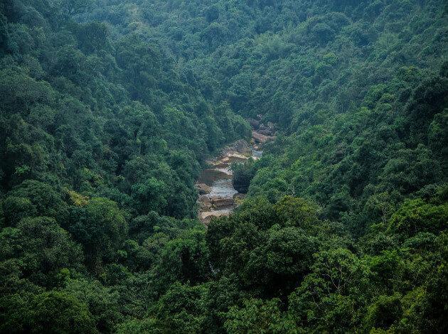 Cherrapunjee - monsoon destination in India