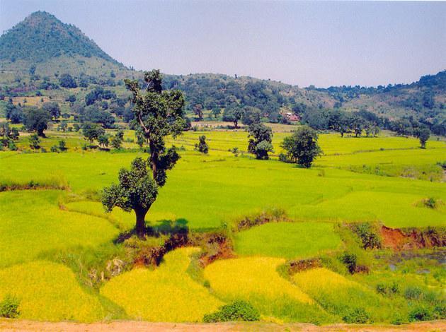Araku Valley - must visit hill station