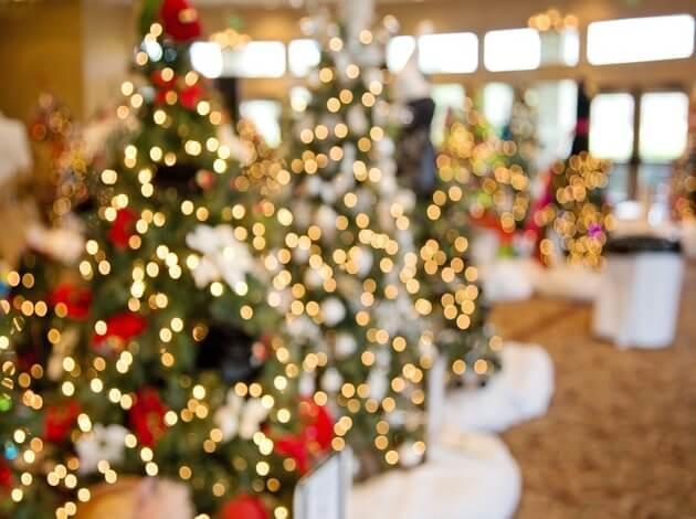 Celebrate Christmas in Kolkata - For an Upbeat Christmas