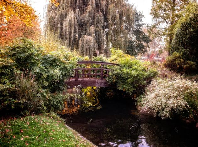 Queen Mary's Garden - a romantic place for couples
