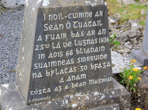 Irish Gaelic