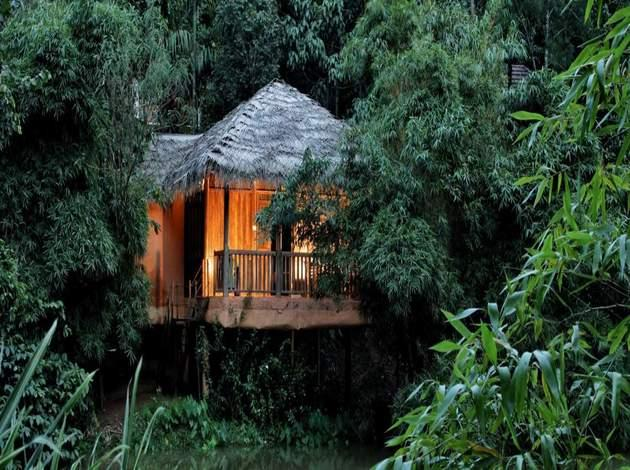 hotels to stay in Wayanad