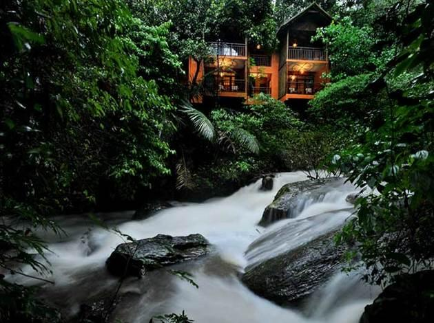 accommodation options in Wayanad