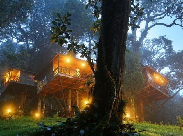 Nature Zone Resort