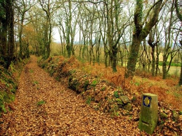 El Camino de Santiago - interesting walking trail