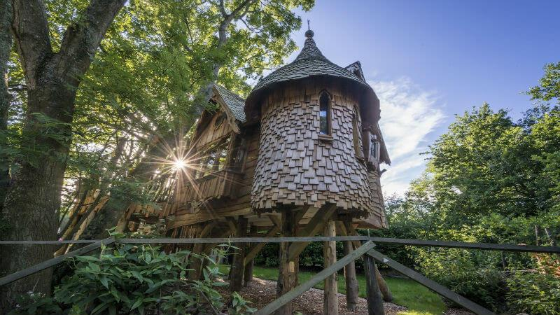 Blackberry Wood Tree House in South Downs
