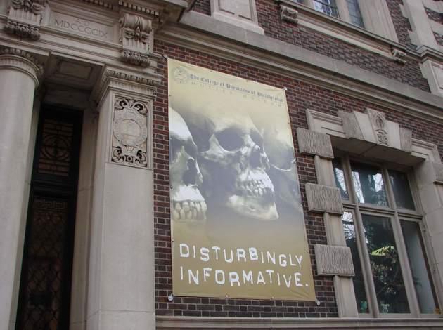 an unusual museum to visit in Philadelphia