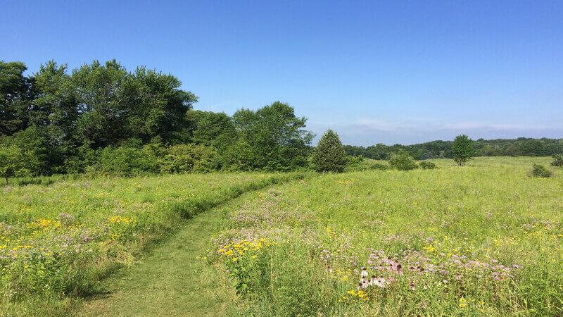 Kettle Moraine State Forest - Go Camping near Chicago