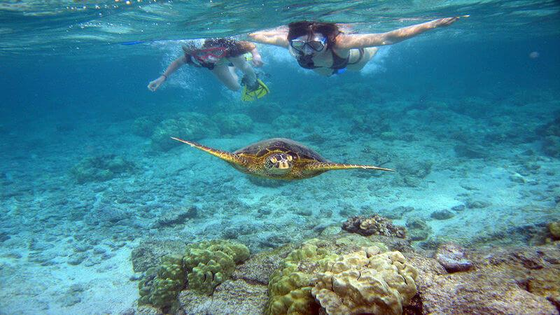 Kahe Point - Places For Snorkeling in Honolulu