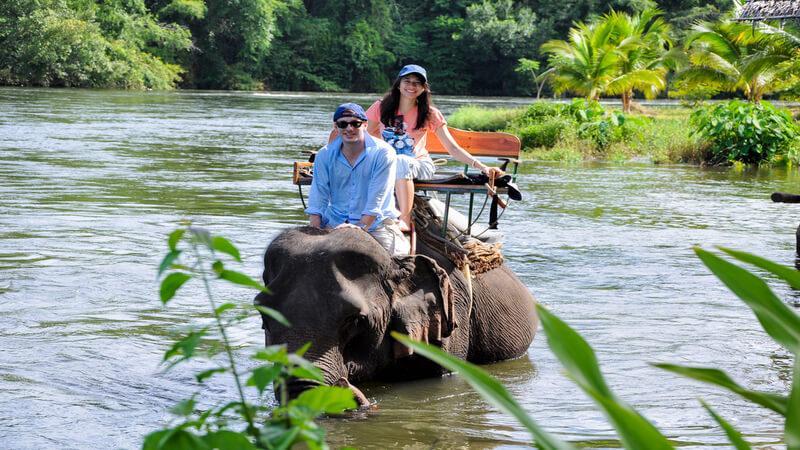 Befriend elephants in Elephant's World