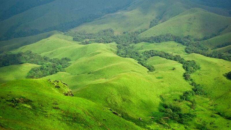 a peaceful hill station in India- Coorg