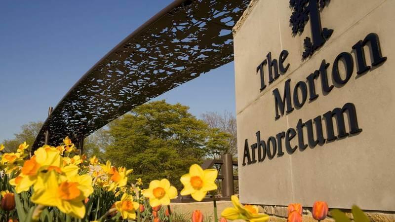 Morton Arboretum - walking trails near Chicago