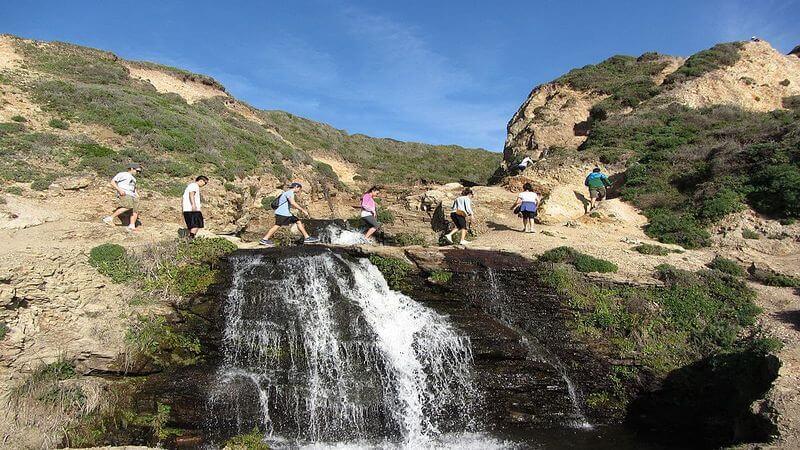 Palomarin Trailhead to Alamere Falls Trails