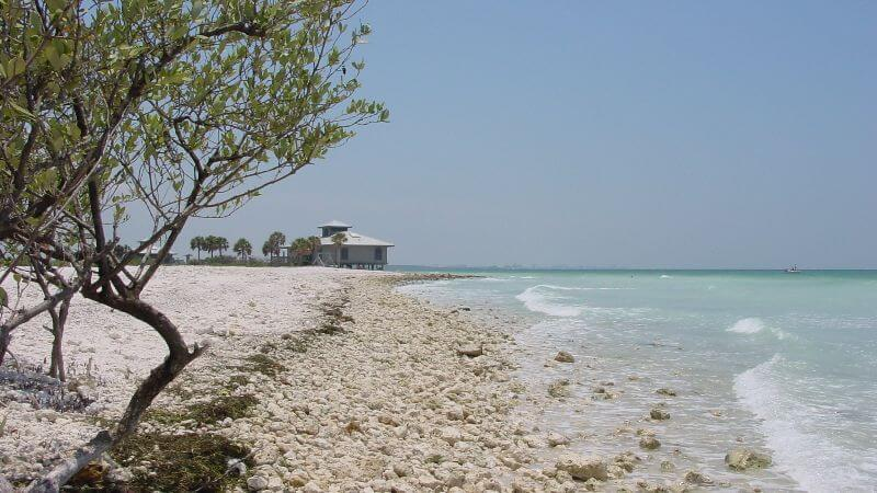 Honeymoon Island beaches
