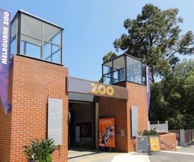 Melbourne Zoo Tours