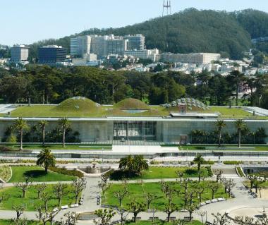 California Academy Of Sciences Tours