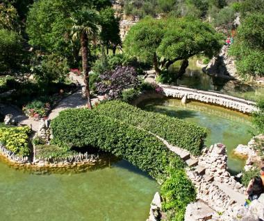 Japanese Tea Gardens Tours
