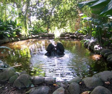 La concepcion jardin botanico historico de malaga malaga for Bodas jardin botanico malaga