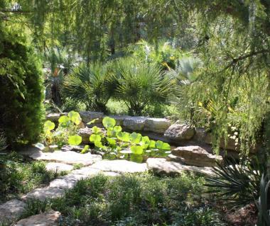 The Botanic Garden Tours