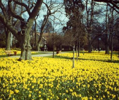 Hazlehead Park  Tours