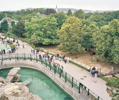 Tiergarten Schonbrunn Tours