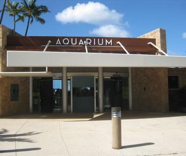 Waikiki Aquarium Tours