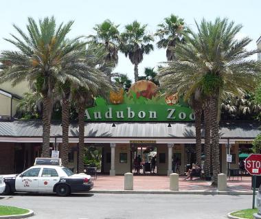 Restaurants Near Audubon Zoo