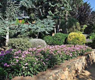 Jardins de cap roig tours calella de palafrugell ticket for Jardines cap roig