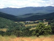 Strandja Mountain